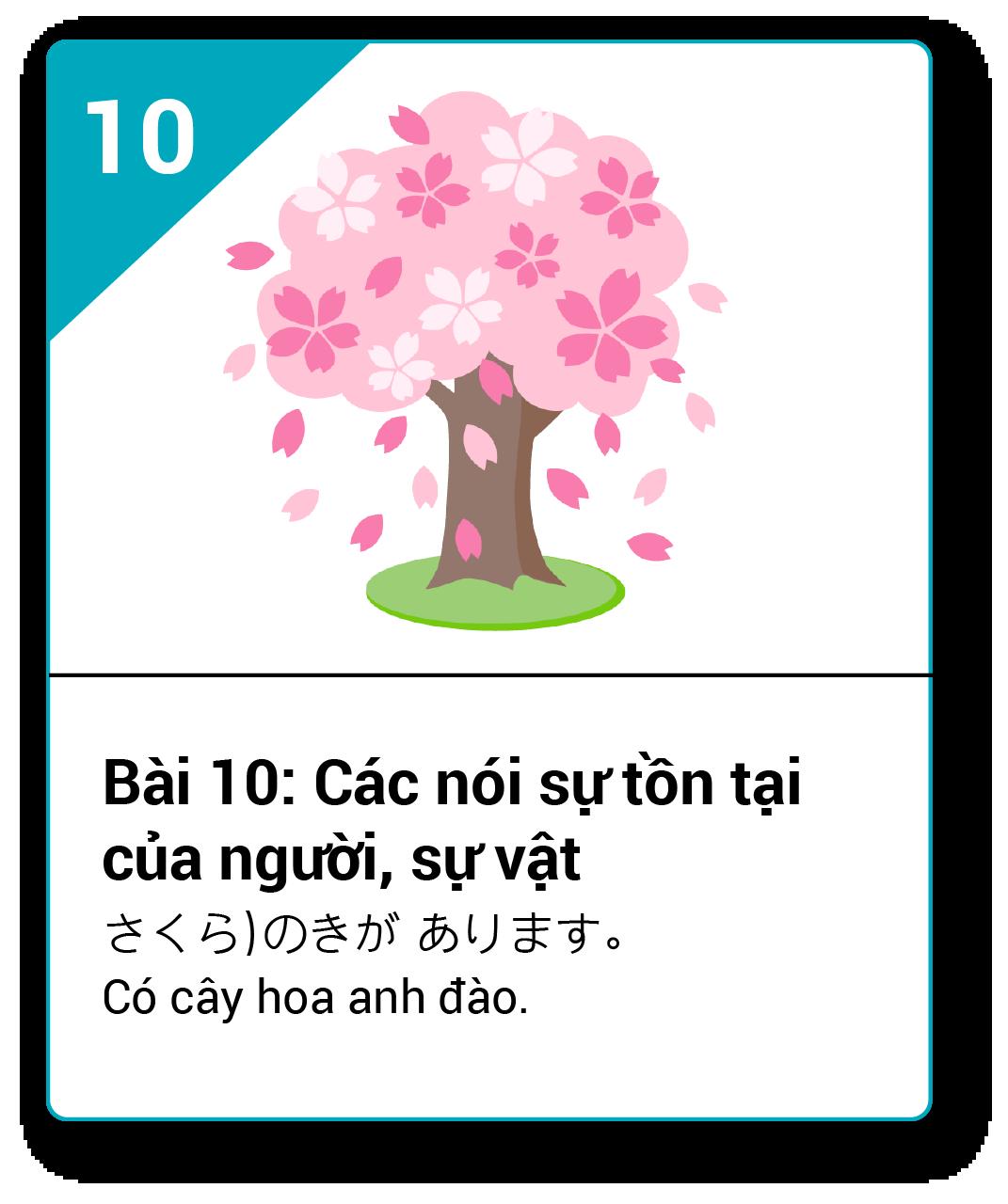 Từ vựng ngữ pháp Minna bài 10